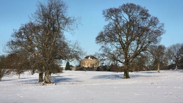 Dog walk at Ickworth House