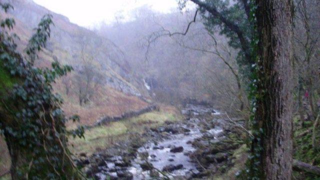 Dog walk at Ingleton Waterfalls Trail