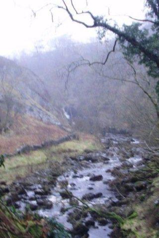 Dog walk at Ingleton Waterfalls Trail photo