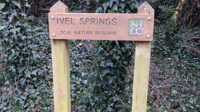 Dog walk at Ivel Springs, Baldock