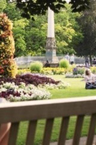 Dog walk at Jephson Gardens photo