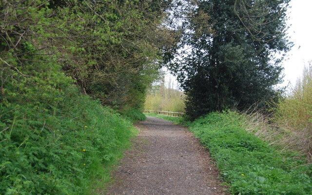 Jeskyns Country Park, Gravesend Dog walk in Kent