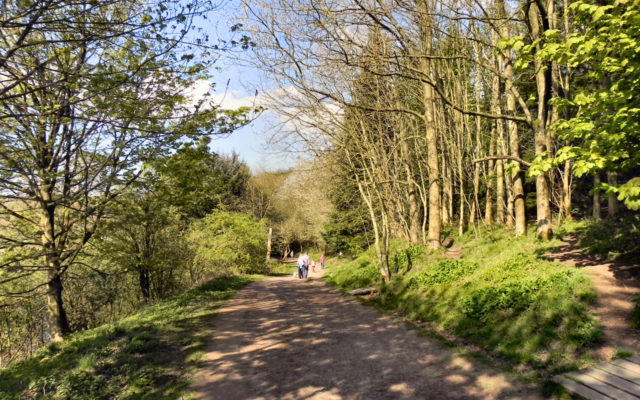 Jumbles Country Park and Reservoir Dog walk in Manchester (Greater)