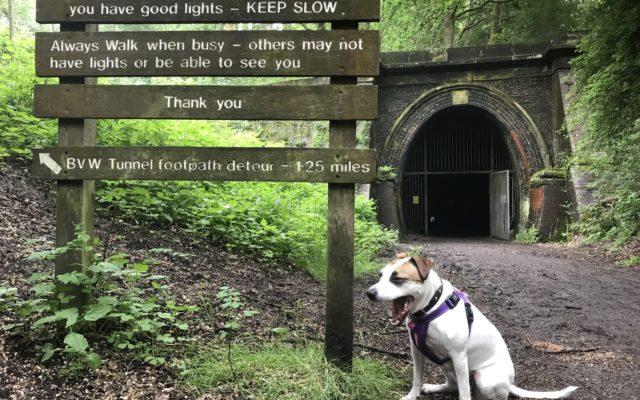 Kelmarsh Tunnels Dog walk in Northamptonshire