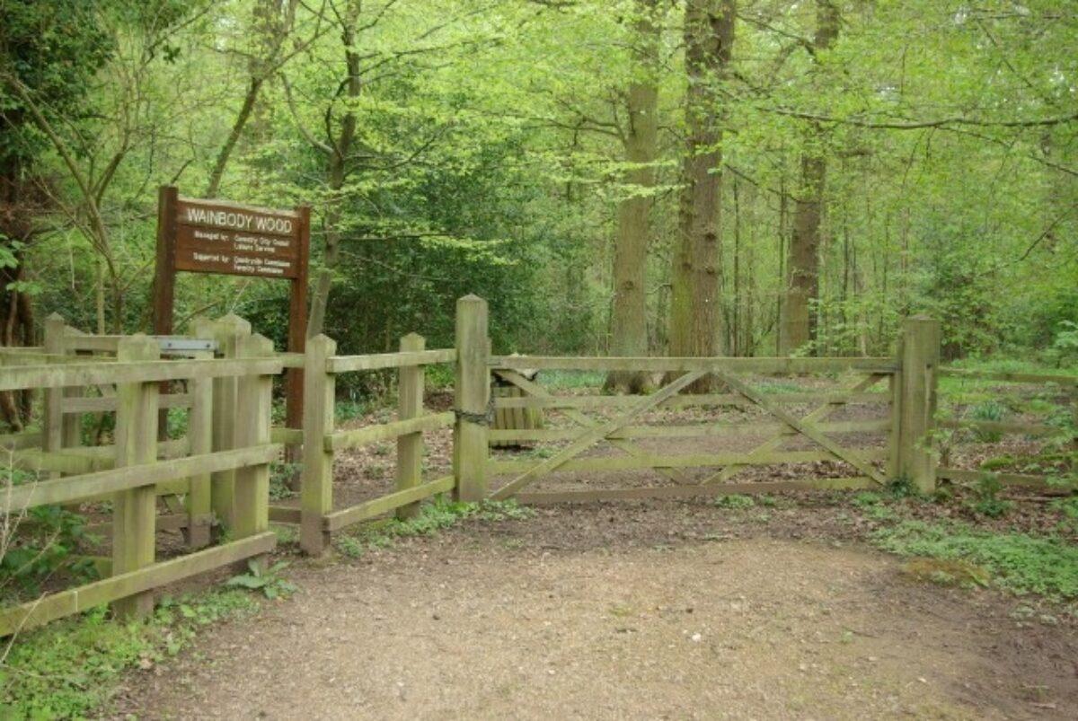Kenilworth Road Woodlands large photo 1