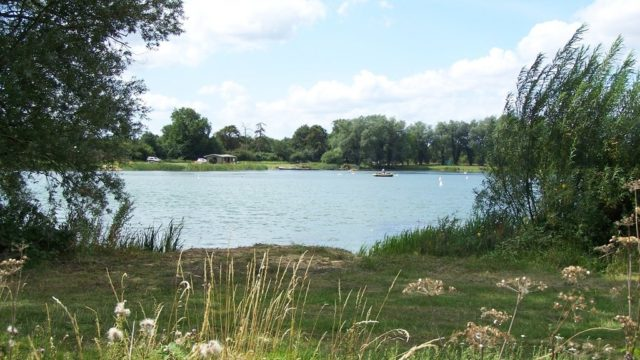 Dog walk at Kinewell Lake, Ringstead