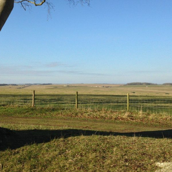 King Barrow Ridge - Stonehenge - Carcus Walk photo 10