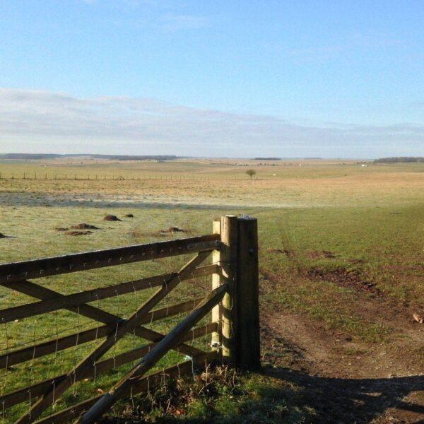 King Barrow Ridge - Stonehenge - Carcus Walk photo 21