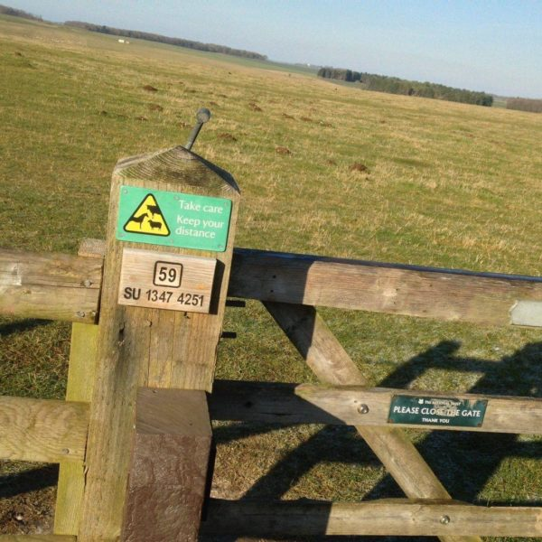 King Barrow Ridge - Stonehenge - Carcus Walk photo 7