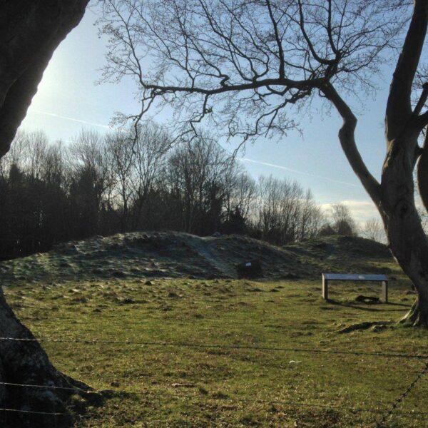 King Barrow Ridge - Stonehenge - Carcus Walk photo 8