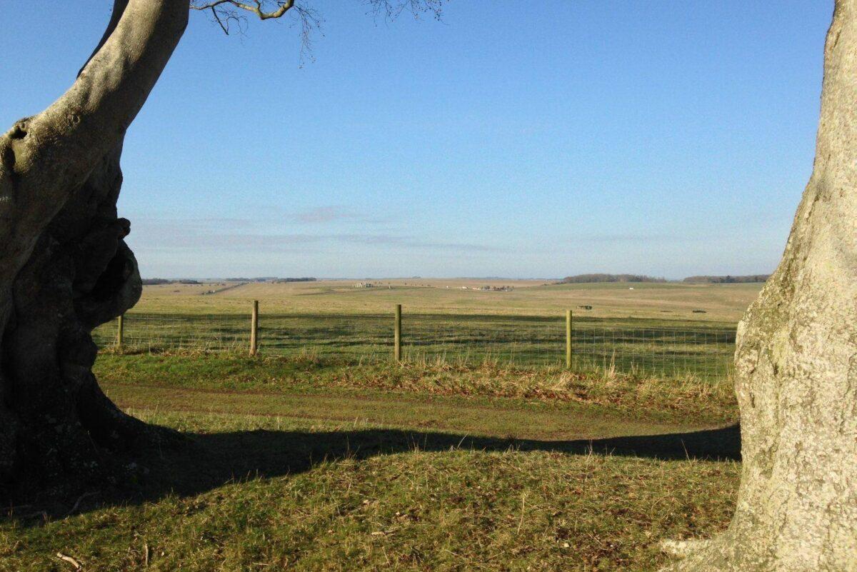 King Barrow Ridge - Stonehenge - Carcus Walk large photo 10
