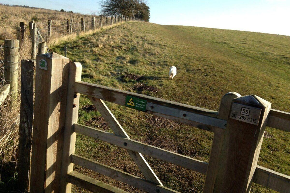 King Barrow Ridge - Stonehenge - Carcus Walk large photo 18