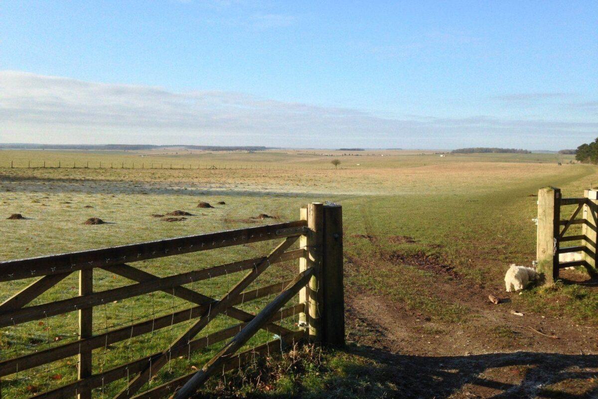 King Barrow Ridge - Stonehenge - Carcus Walk large photo 21