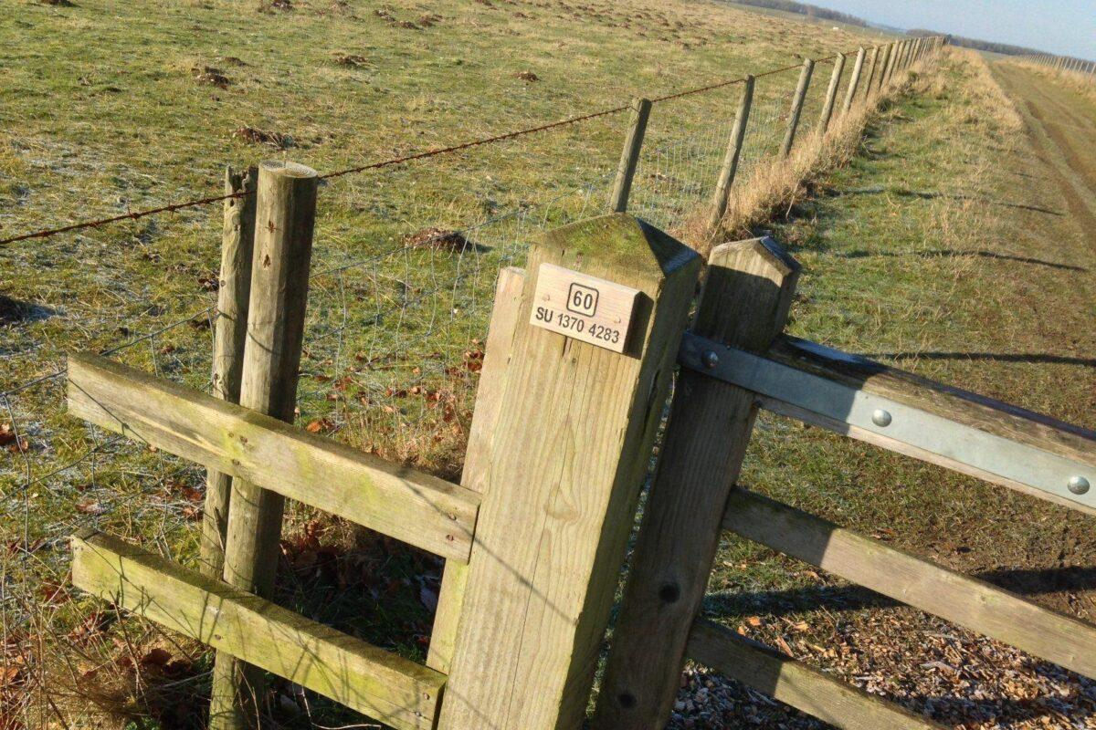 King Barrow Ridge - Stonehenge - Carcus Walk large photo 4