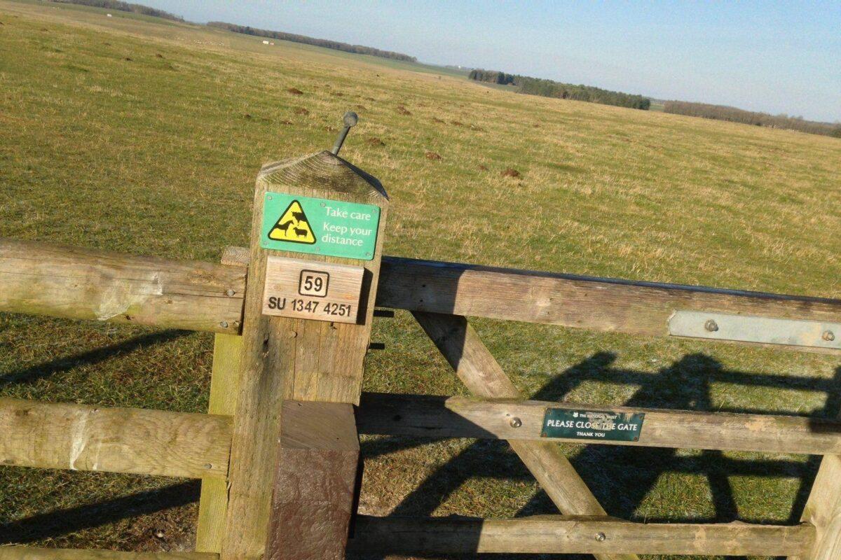 King Barrow Ridge - Stonehenge - Carcus Walk large photo 7
