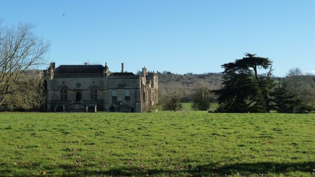 Dog walk at Lacock Abbey