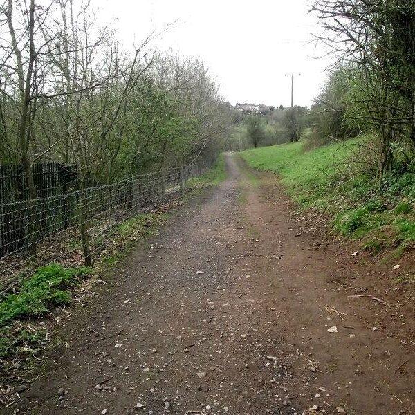 Dog walk at Ladderedge Country Park Near Leek