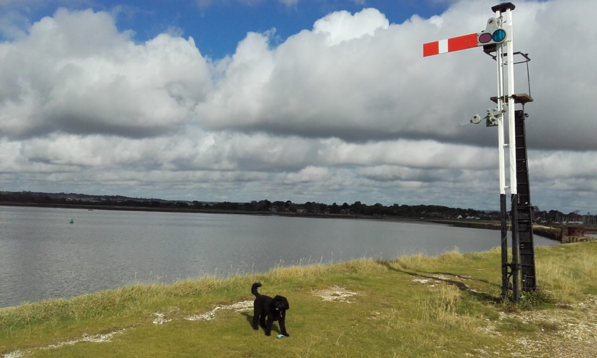 Langstone Harbour and Hayling Island large photo 5
