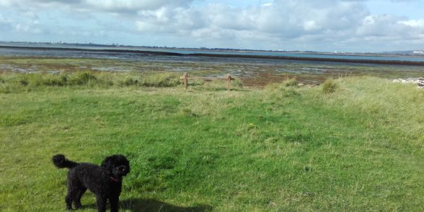 Langstone Harbour and Hayling Island