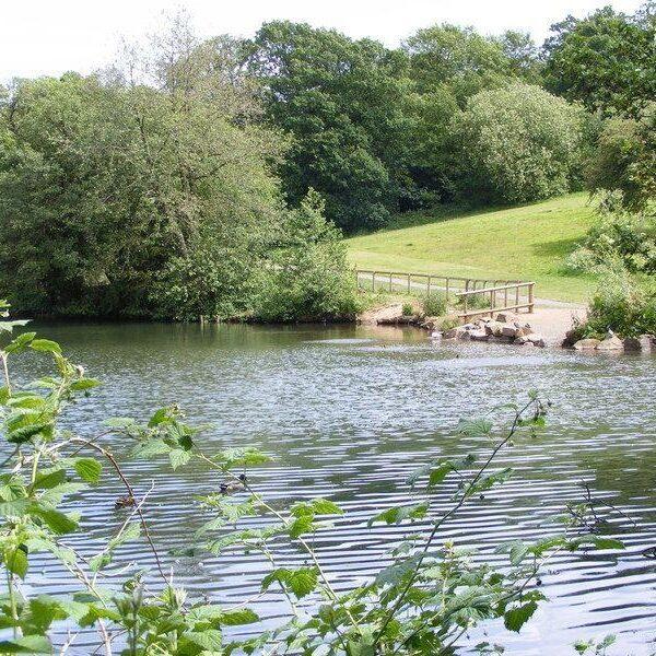 Leasowes Park photo 1