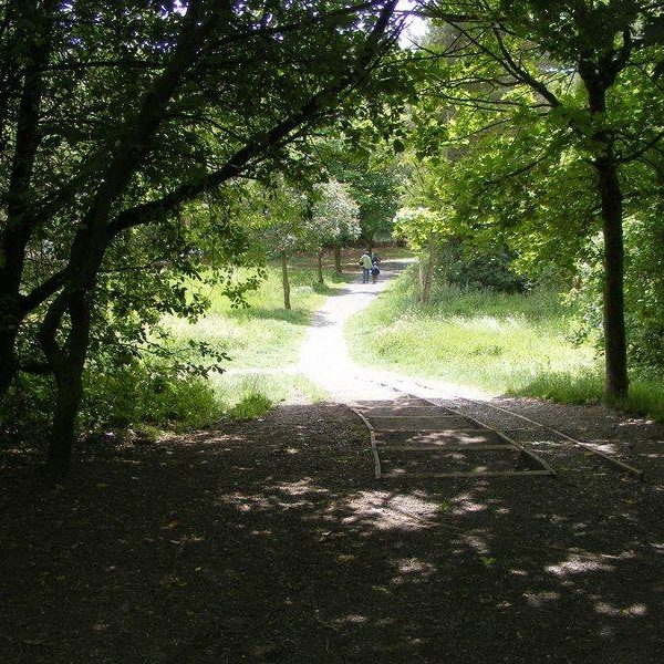 Leasowes Park photo 2