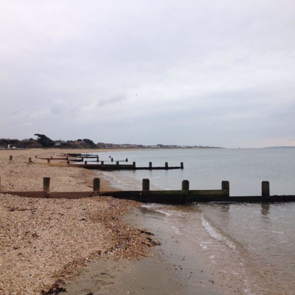 Dog walk at Lee On The Solent Beach