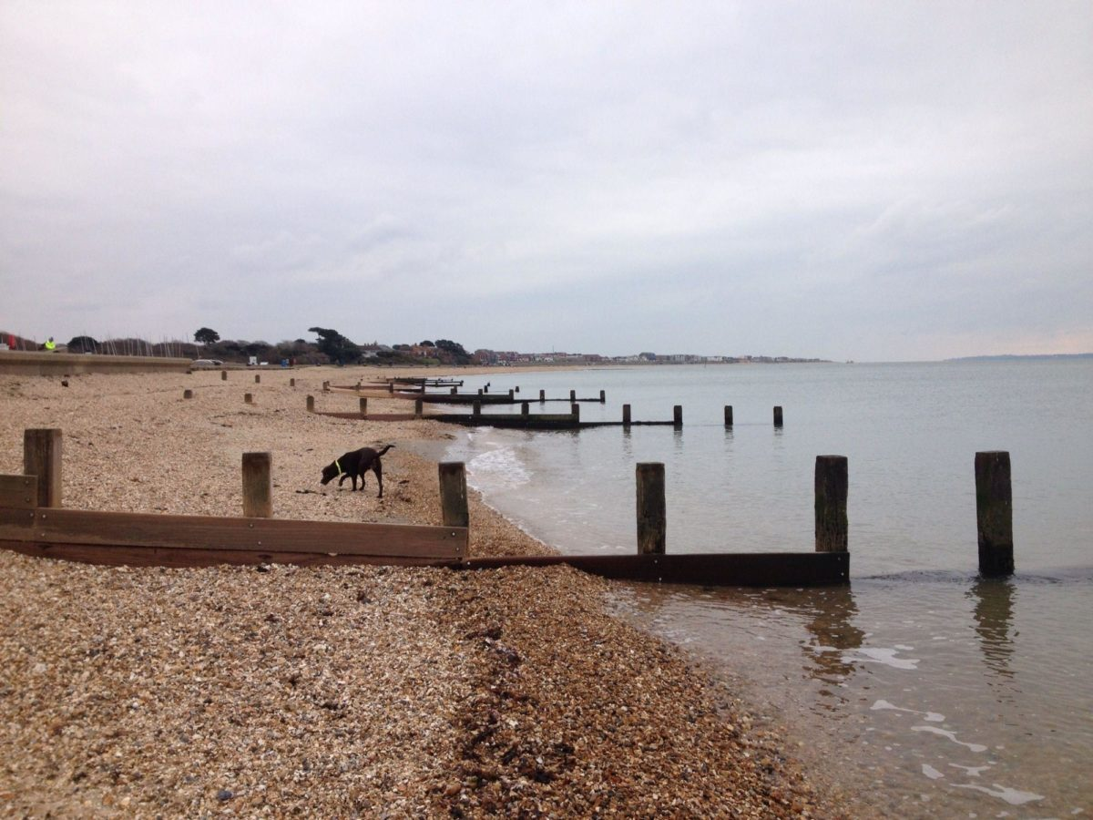 Lee On The Solent Beach large photo 2