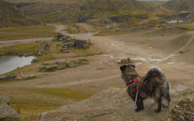 Lee Quarry, Rossendale Dog walk in Lancashire