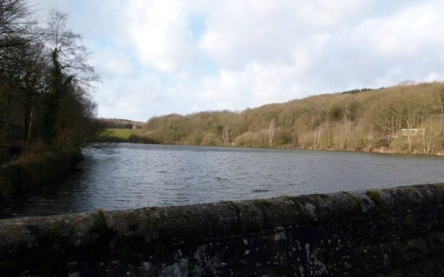 Linacre Reservoirs Dog walk in Derbyshire