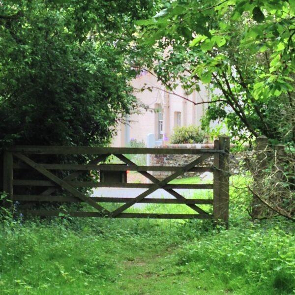 Linnets Wood, Ugley photo 3
