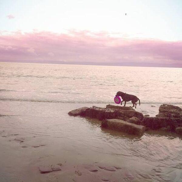 Llanwit Major Beach photo 3