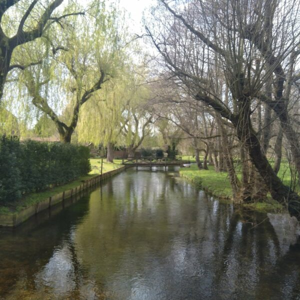 Lockerley - Spearywell photo 5