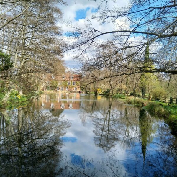 Lockerley - Spearywell photo 6