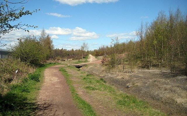 Lofthouse Colliery Nature Park Dog walk in Yorkshire (West)