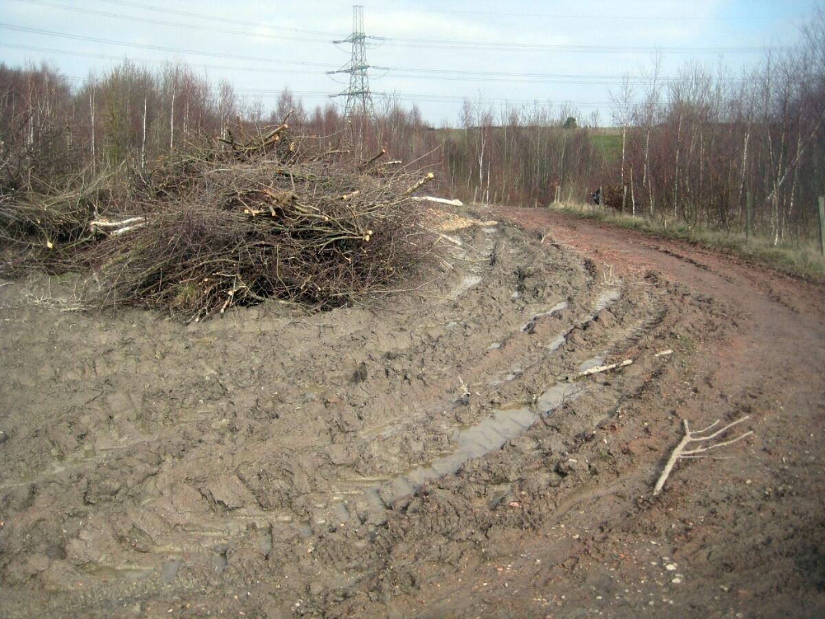 Lofthouse Colliery Nature Park large photo 2