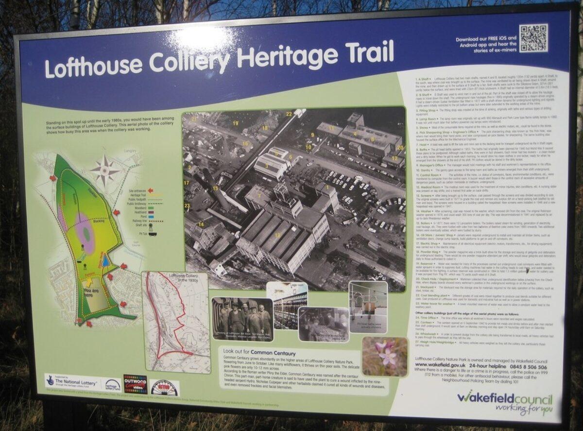 Lofthouse Colliery Nature Park large photo 4