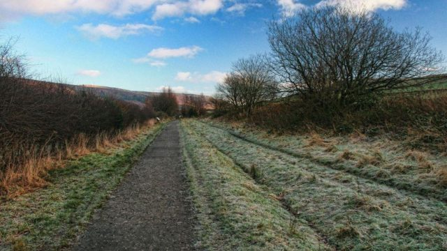 Dog walk at Longdendale Trail