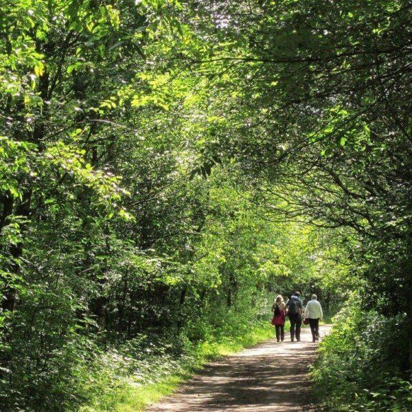 Longdendale Trail photo 3