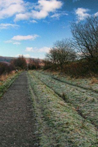 Dog walk at Longdendale Trail photo