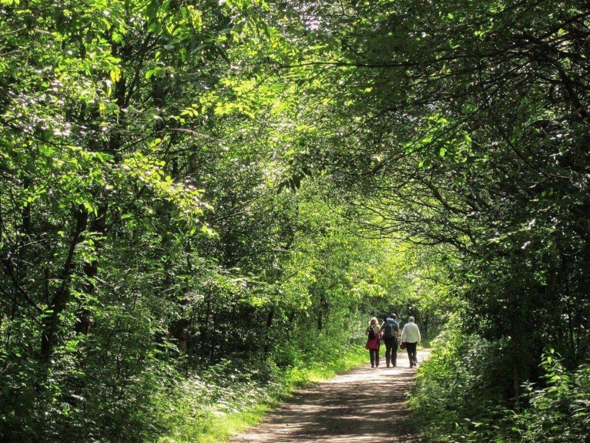 Longdendale Trail large photo 3