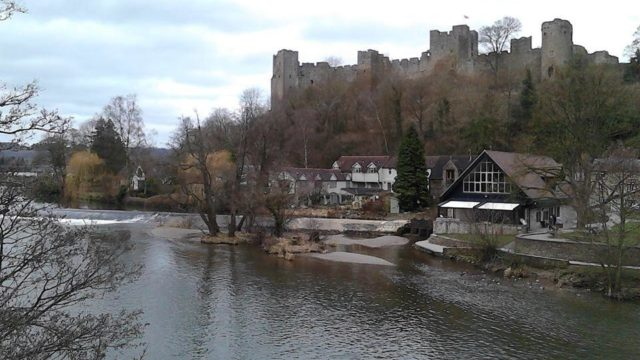 Dog walk at Ludlow Castle