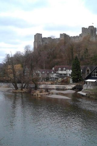 Dog walk at Ludlow Castle photo