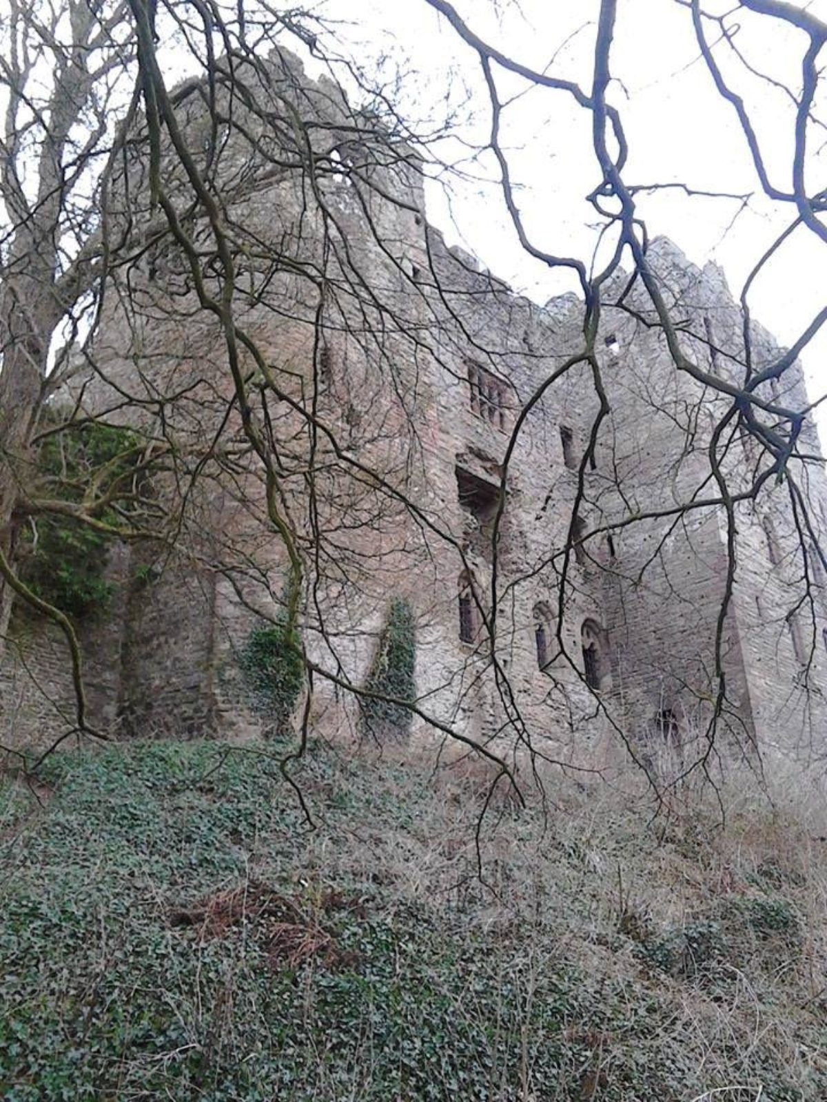 Ludlow Castle large photo 4