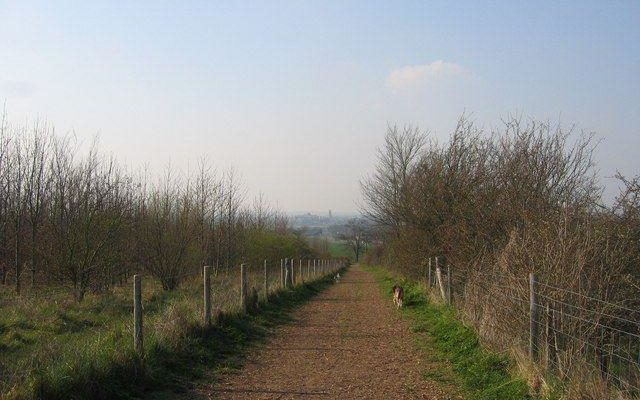 Magog Down Dog walk in Cambridgeshire