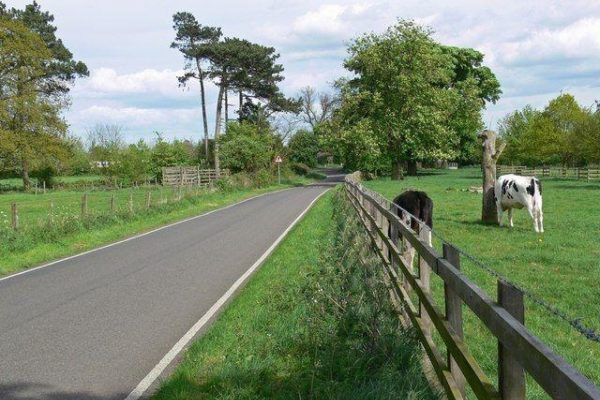 Market Bosworth Country Parkphoto