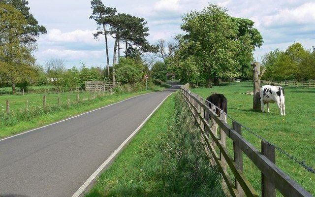Market Bosworth Country Park Dog walk in Leicestershire