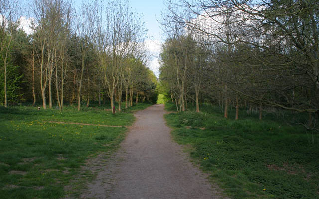 Melton Country Park Dog walk in Leicestershire