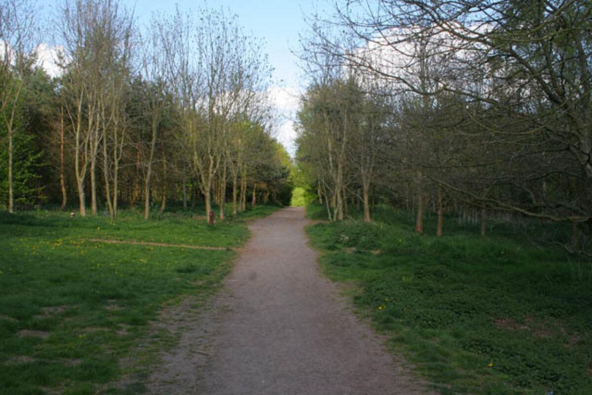 Melton Country Park large photo 3