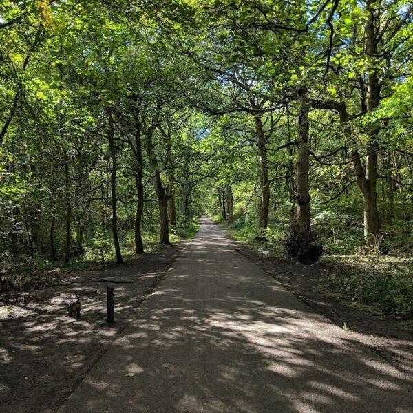 Middleton Park photo 5