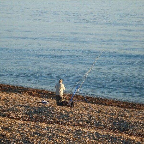 Dog walk at Milford On Sea